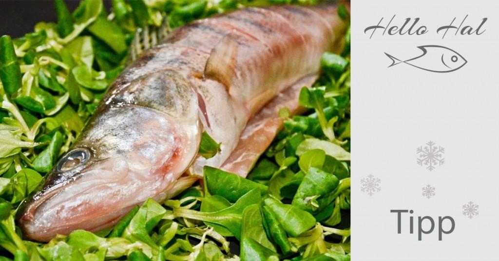 hellohal-halvásárlás