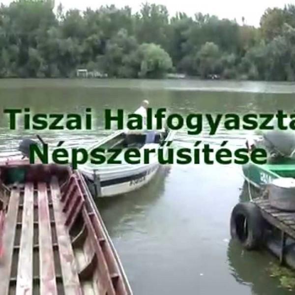 Tiszai halfogyasztás népszerűsítése image film