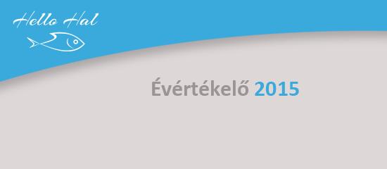 HelloHal évértékelő 2015